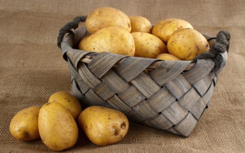 马铃薯垃圾