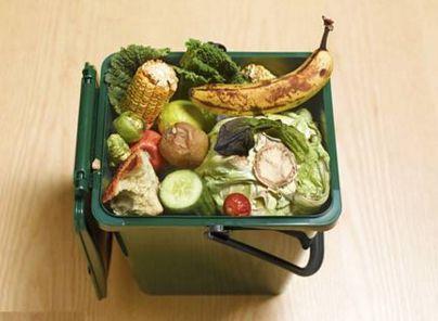 餐厨垃圾处理市场发展前景与投资机会