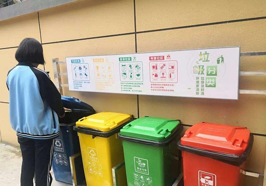 推行垃圾分类回收,构建绿色环保校园