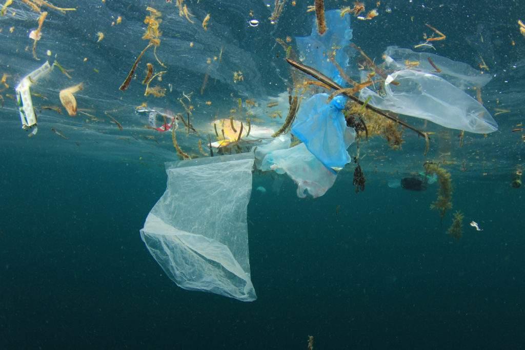 塑料海洋污染和海洋漂浮垃圾塑料袋.
