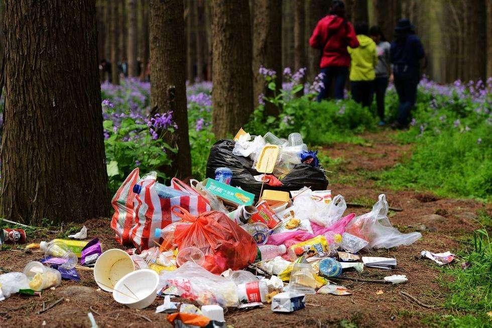 2014年4月6日,江苏省泰州市李中水上森林公园景区游客丢弃的垃圾。
