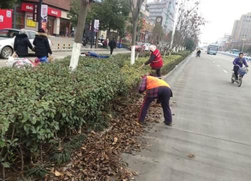 园林工人清理儒林路绿化带上的垃圾